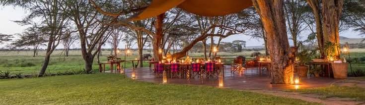 Our Treat-trip to Sirikoi, Multi-Award Winning 'Kenya's Leading Safari Lodge' Lewa, Laikipia, Northern Kenya